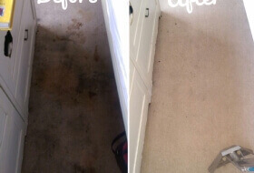 Carpet Clean - HEAVY STAINING Tunbridge Wells